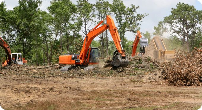 Searching for  best  Land clearing and landfill services in Sydney ? We have a team of specialists that offers cost effective services and evenly works with the latest equipment that get your work done within  a short time. For further assistance, Visit  www.chomp.com.au