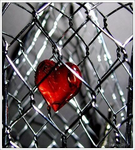 My <3 is on the fence about something...