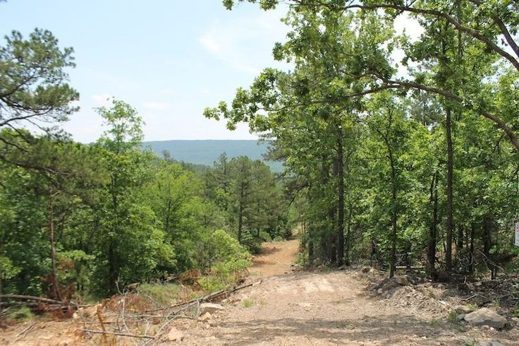 ClassicCountryLand.com YOU ARE BIDDING ON THE DOWN PAYMENT ONLY & ASSUMING MONTHLY PAYMENTS! Sales Price: $23,400.00. Monthly Payment of $205.18 for 3... #sale #hunt #camp #land #mountain #acres #oklahoma #month