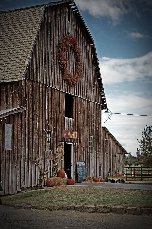 gorgeous weathered barn