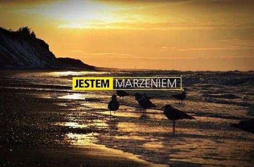 Marzeniem o wakacjach na ciepłej plaży. fot. Weronika Lewczuk #D3300 #konkursnikon #konkurs #jestem #iam #iamnikon #jestemnikon #photooftheday #nikontop #fotografia #photography #nikon #plaża #marzenie #marzenia #ptaki #zachód via Nikon on Instagram - #photographer #photography #photo #instapic #instagram #photofreak #photolover #nikon #canon #leica #hasselblad #polaroid #shutterbug #camera #dslr #visualarts #inspiration #artistic #creative #creativity
