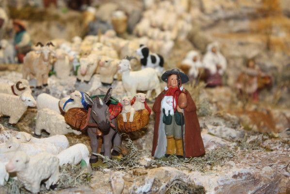 Dans la transhumance, on trouve également des ânes qui transportent le matériel mais aussi les agneaux nouveaux-nés et moutons fatigués (âne...