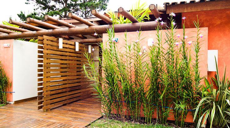 Um boa ideia para esconder o varal ou a lavanderia para - Plantas trepadoras para muros ...