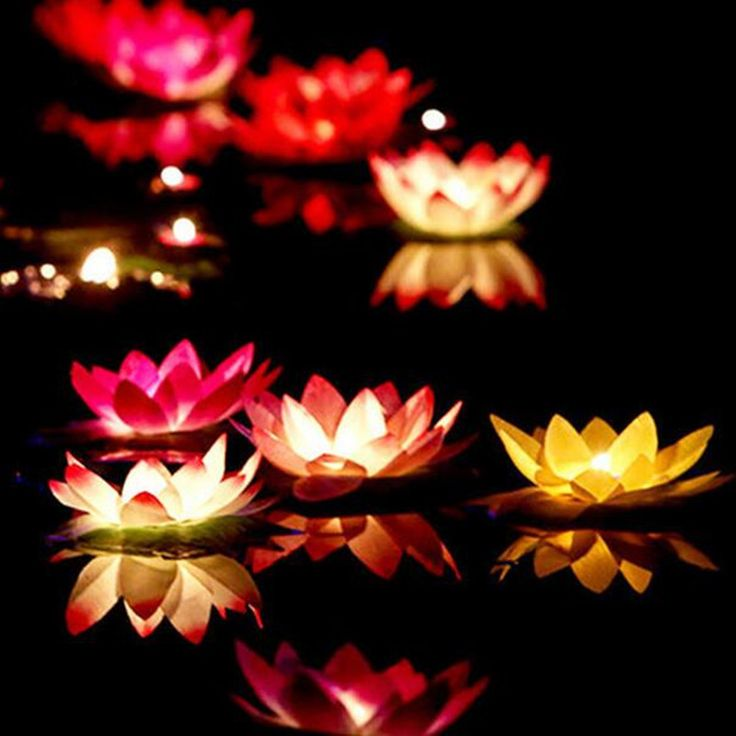 signs you may be addicted to  Sale Price US $10.90 10pcs  Multicolor silk Floating Lotus Light Garden Outdoor Flower Lamp Wishing Lanterns for birthday wedding party decoration ing #Candles#Holders