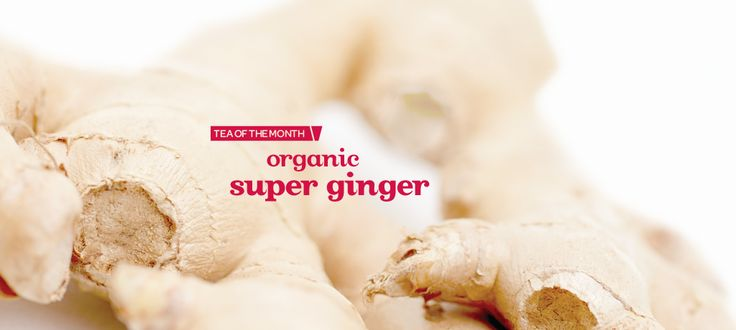 Super Ginger (Organic) by DavidsTea. Need this to kill colds, which I've had a terrible bout of lately...