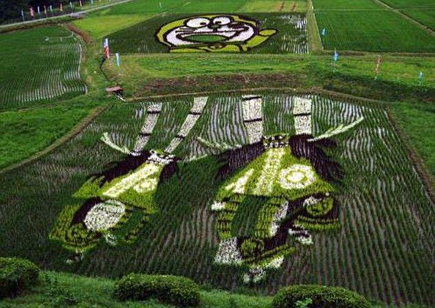 Arte nas plantações de arroz do Japão! Inakadate, uma obra de arte feito com a colaboração de centenas de pessoas.