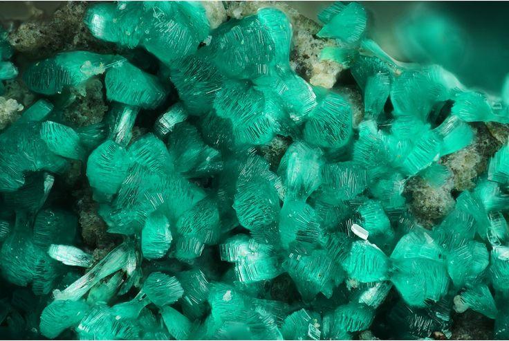 Parnauite Cu9(AsO4)2(SO4)(OH)10·7H2O Locality: Hilarion Mine, Hilarion area, Kamariza Mines, Agios Konstantinos [St Constantine], Lavrion District Mines, Lavrion District, Attikí Prefecture,...