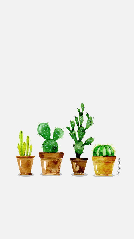iphone6-lacapuciine-cactus.jpg (750×1334)