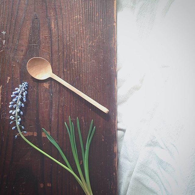 樺のスプーン  3/19(日)手創り市雑司ヶ谷さんに出店させていただきます☆  #木のスプーン #匙 #カトラリー #暮らし #暮らしの道具 #ものづくり #手仕事 #てしごと #手彫り #制作 #花 #ムスカリ #手創り市 #台所 #雑貨 #道具 #wood #woodworking #woodenspoon #cutlery #handcrafted #handmade #slowliving #still_life_gallery #flower #kitchentools #white #instapic #japan #kamadaapartment  Yummery - best recipes. Follow Us! #kitchentools #kitchen