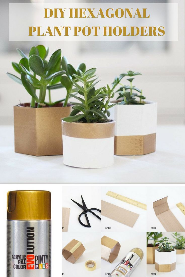 How to make gold hexagonal plant pots from cardboard and Pinty Plus evolution metalic spray paint
