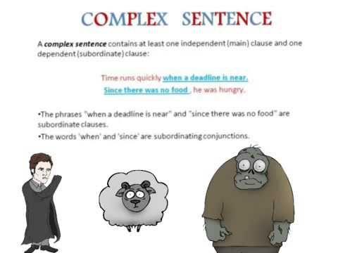 Complex Sentences w/ @Grogthezombie, Sheep & Edward
