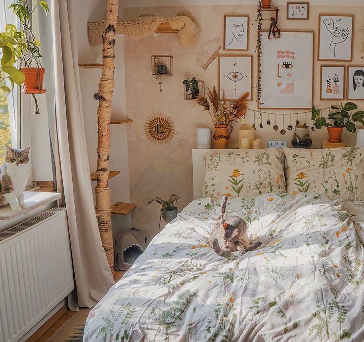 Redecorate Bedroom, Aesthetic