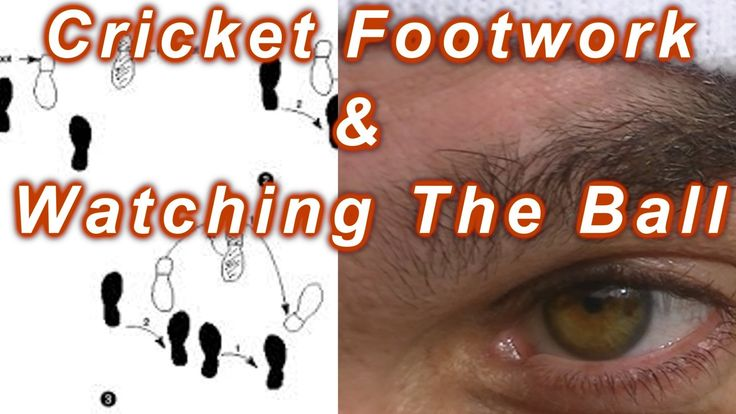 Cricket Coaching Batting Tips - Footwork According To The Cricket Ball