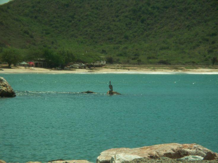 Playa Zaragoza - Isla de Margarita