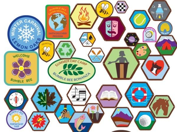 GIRL SCOUT BADGES shapes