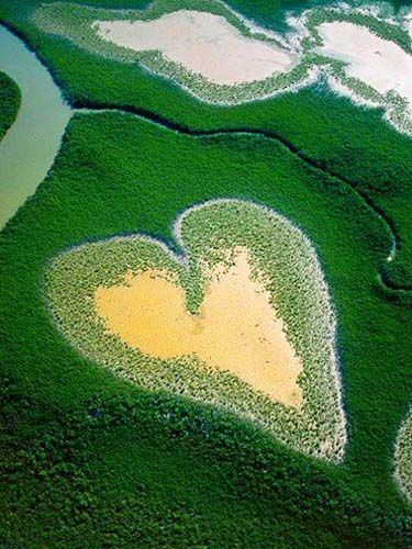 Heart-Shaped Mangrove, Voh, New Caledonia.   www.myhoneymoonplanner.com