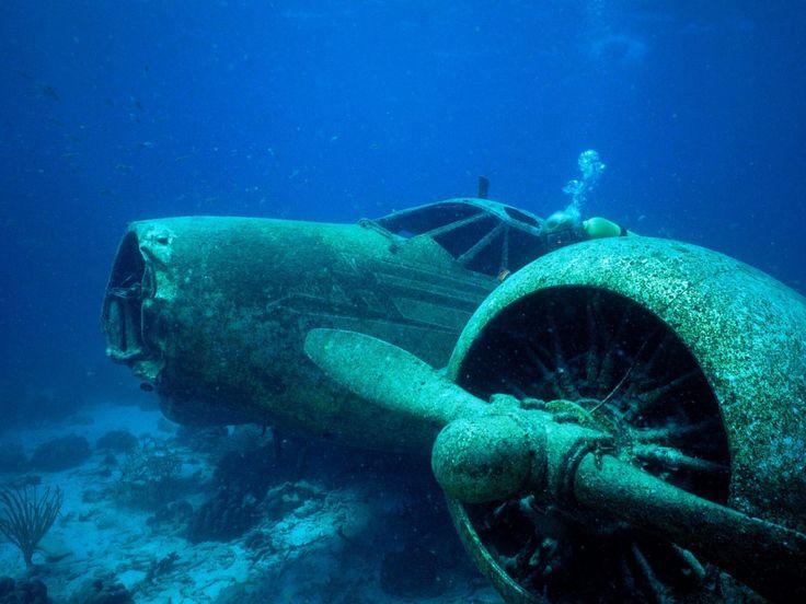 air-planes-crashed-underwaterMilitary Aircraft, The Ocean, Scubas Diving, Underwater Photography, Sea, Desktop Wallpapers, Sunken Planes, Ocean Photography, Ocean Life