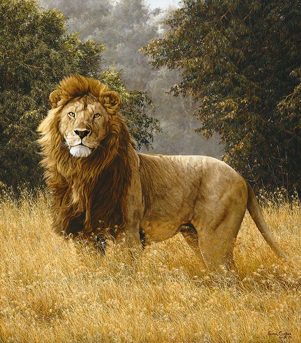 It is fitting that Simba be released as an Anniversary Edition Fine Art Canvas at this time. Description from ebay.com. I searched for this on bing.com/images