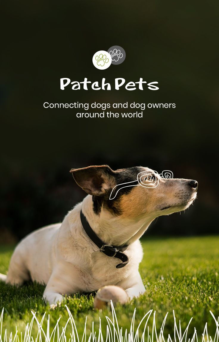 Home Patchpets The Number One Social Media Dog App Dogs Dog Friends Dog Owners