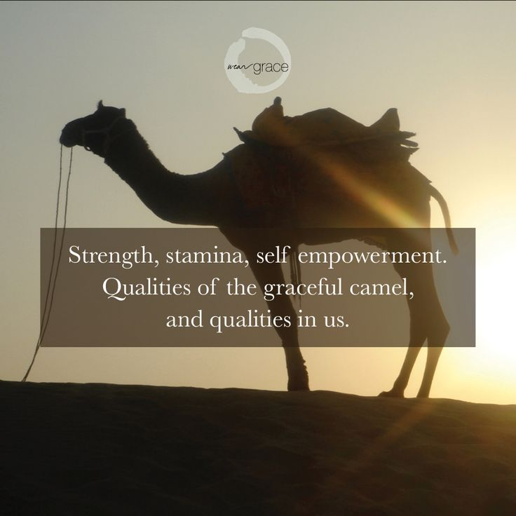 Strength with WearGrace