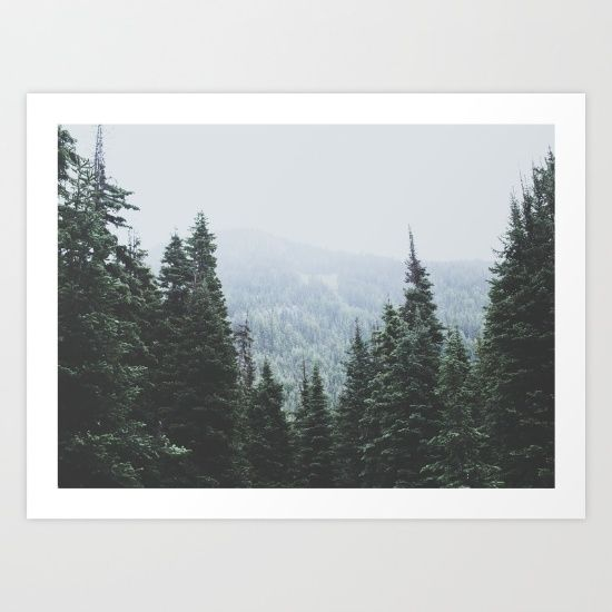 Forest Window Art Print