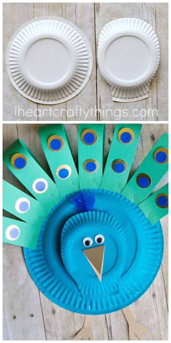 peacock paper plates A comprehensive gift, home & lifestyle brand bringing you beautiful, high quality and affordable items for every room in the house.