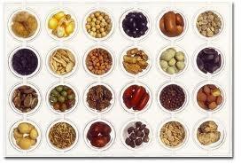 Organic Seed Resources  http://www.beginningfarmers.org/organic-seed-sources/