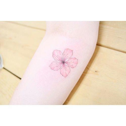 tattoo and sakura image                                                                                                                                                                                 More