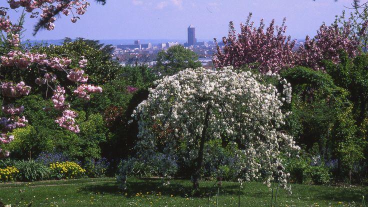 Situé à flanc de colline, sur hauteurs de Lyon, le jardin de La Bonne Maison est une charmante parenthèse botanique aux portes de la capitale des G...