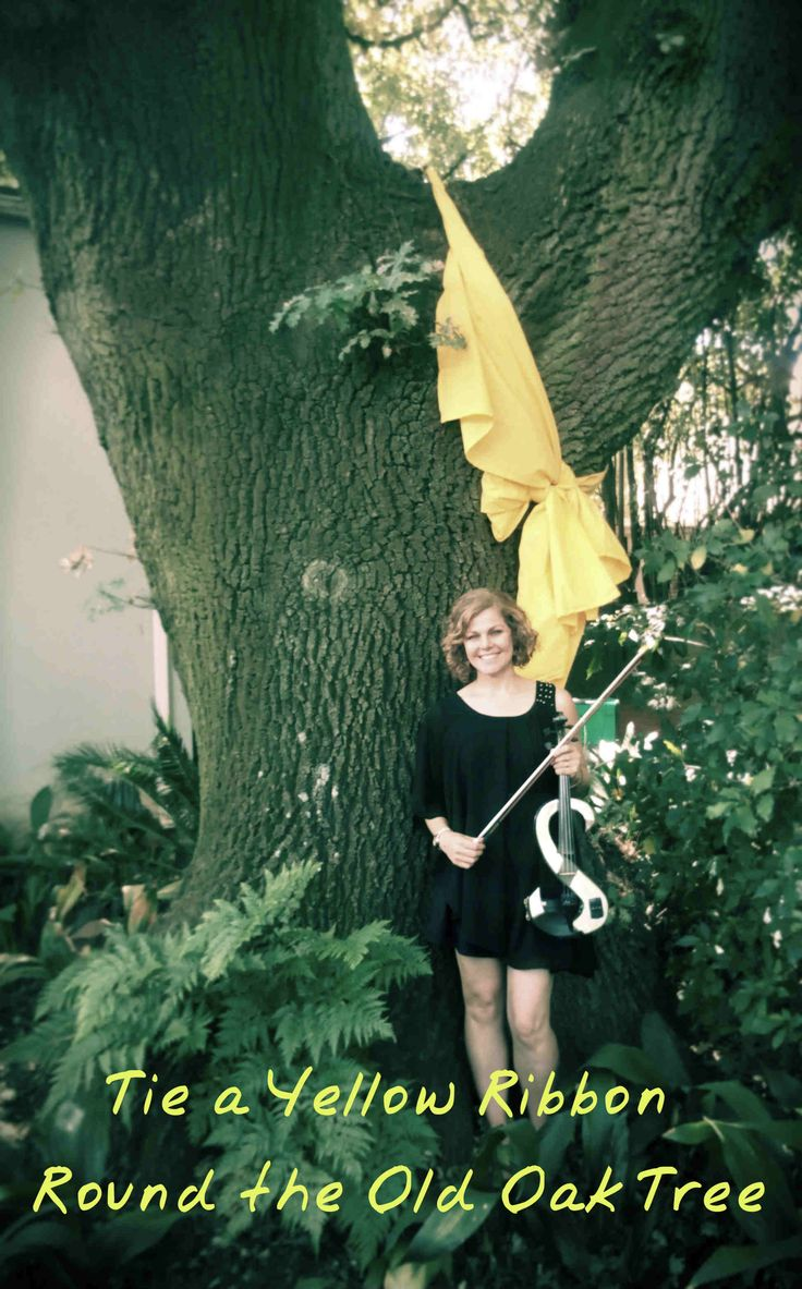 Playing violin under this old oak tree was quite a special occasion, the company that worked on the property, enjoyed the shade of this stately tree for over 20 years. Many functions, lunches and casual smoke-breaks were had under this tree. On this their final day at the office it was fitting to have on last lunch under the tree,  complete with a yellow ribbon round the old oak tree and an electric violin performance.  On a sad note though,  the new owners of the property are planning to…