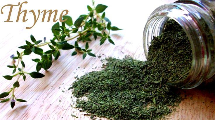 Cách dùng Hương Thảo Tây Rosemary & Thyme Xạ Hương Tây cho món ngon châu Âu