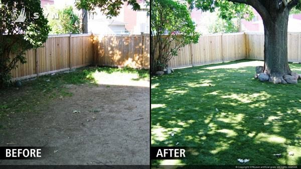 79 best synlawn before and after images on pinterest