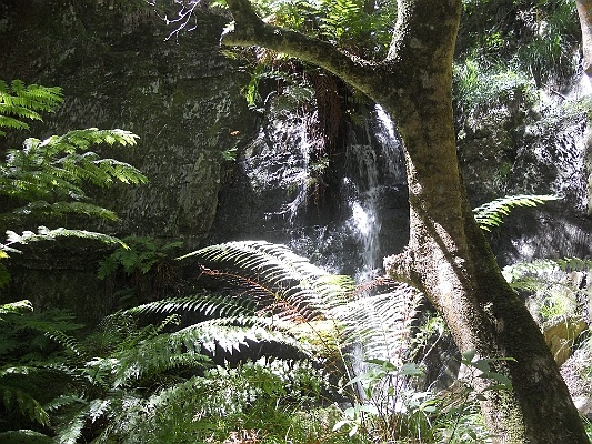 Waterfall in Vrekhoek Kloof