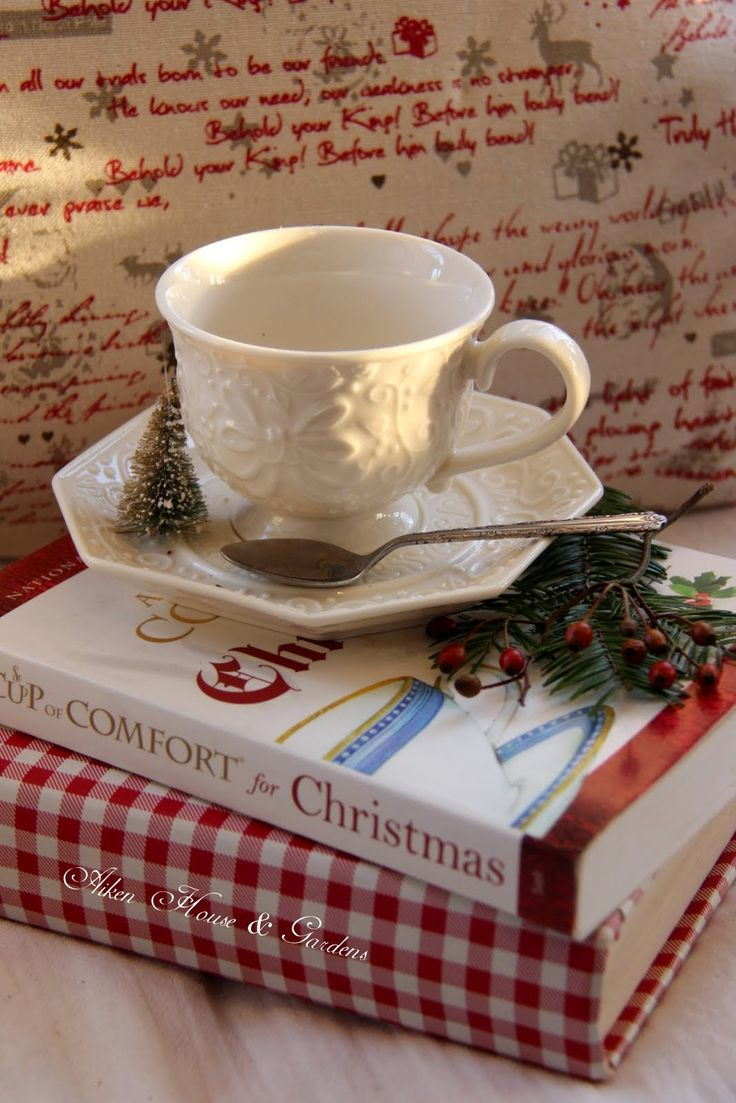 Aiken House & Gardens: Christmas ~ Winter in our Sunroom, a good place for reading, while enjoying a cup of tea...