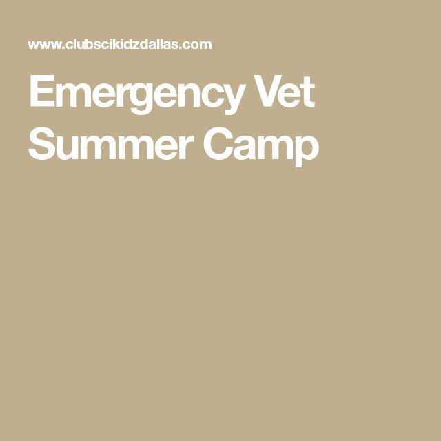 Best 25+ Emergency vet ideas on Pinterest Countryside vet, Puppy - craigslist kenosha