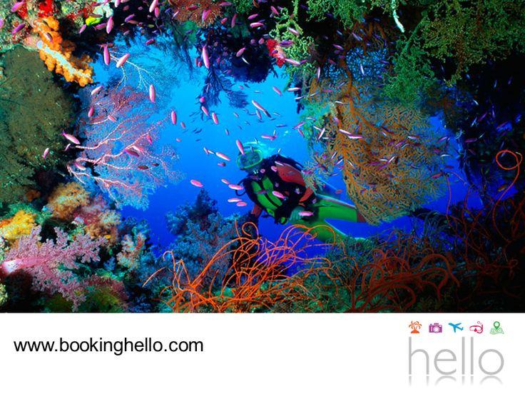 VIAJES EN PAREJA. Hacer snorkeling en el Caribe mexicano, es una de las actividades que debes atreverte a vivir con tu pareja. No hay nada como sumergirte en el fondo del mar y contemplar el sorprendente panorama de arrecifes que se encuentran en esta zona, una actividad que sólo requiere de conocimientos básicos en natación para disfrutarla al máximo. En Booking Hello te recomendamos que si eliges tu pack all inclusive a Cancún, te animes a realizar esta actividad. #HelloExperience