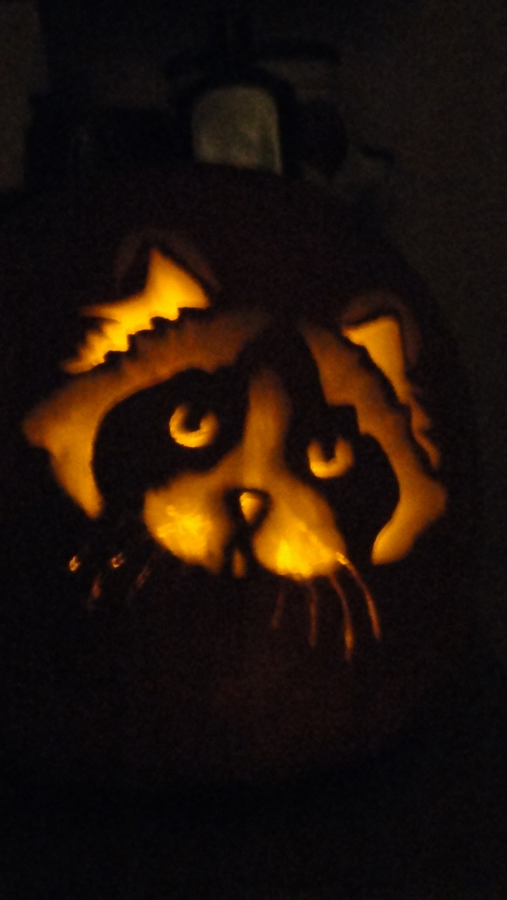 Best holiday pumpkin carving images on pinterest