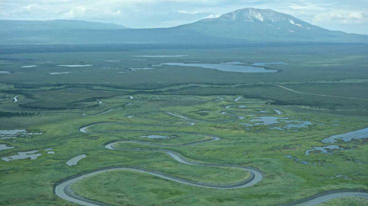 Chuitna-1   l río Chuitna en Alaska es una tierra de osos y hogar de diversas especies de animales que incluyen alces, lobos, castores y cinco especies de salmones silvestres. Además a lo largo de sus 40 km de largo, el río alberga una naturaleza prístina, libre de los daños del hombre.