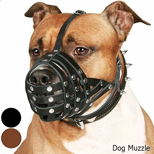 Dog Muzzle - excellent variety. Need to view...