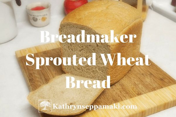 I will admit that I really LOVE fresh bread. The kind that smells so good baking and that you can slice while it's still warm and top with butter which melts all over it. And maybe a little r…