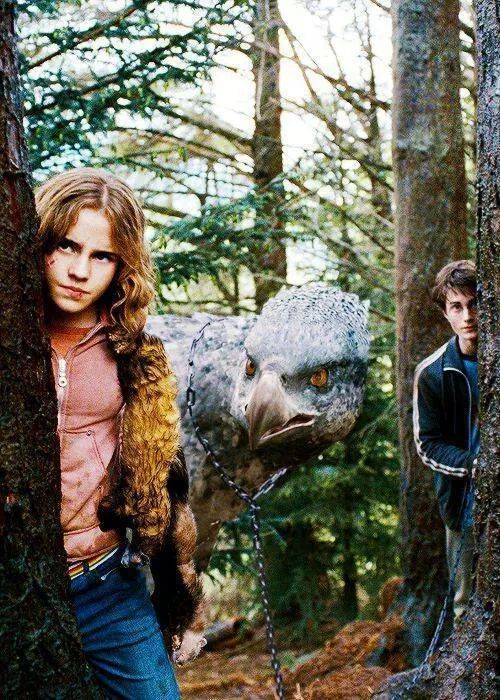J'arrive Potter et Hermione Granger dans le prisonnier d'Azkaban