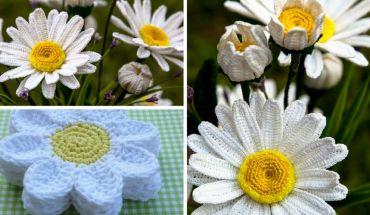 Tuto fleur marguerite au crochet