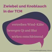 Wirkung von Zwiebel und Knoblauch in der TCM - und warum ich sie nicht verwende