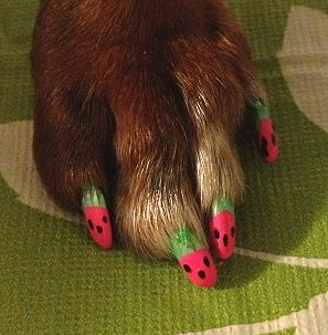Watermelon nail art by Mostly Mischief Pet Grooming & Boutique.