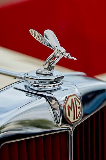 1948 MG TC - The Midge Hood Ornament