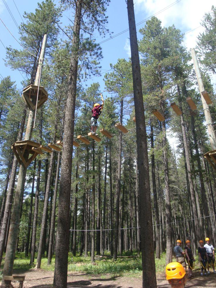 Tree Top Adventures Cypress Hills