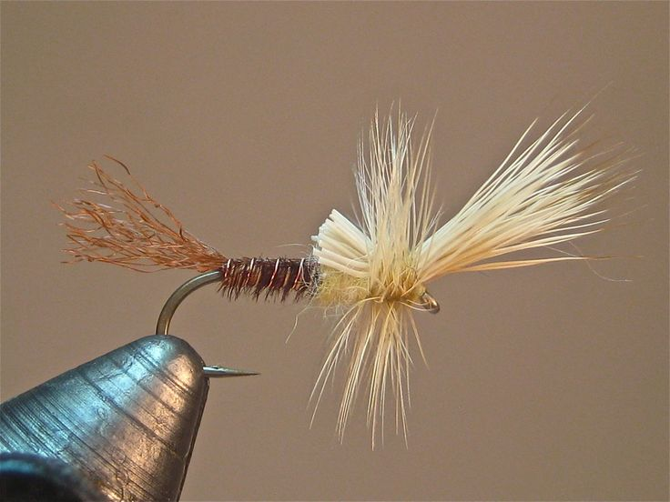 Man Cave Hair Stoney Creek : Best images about fly fishing tying alaska on