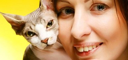 Don't take it personally if someone avoids your cat because of allergies. Peop…