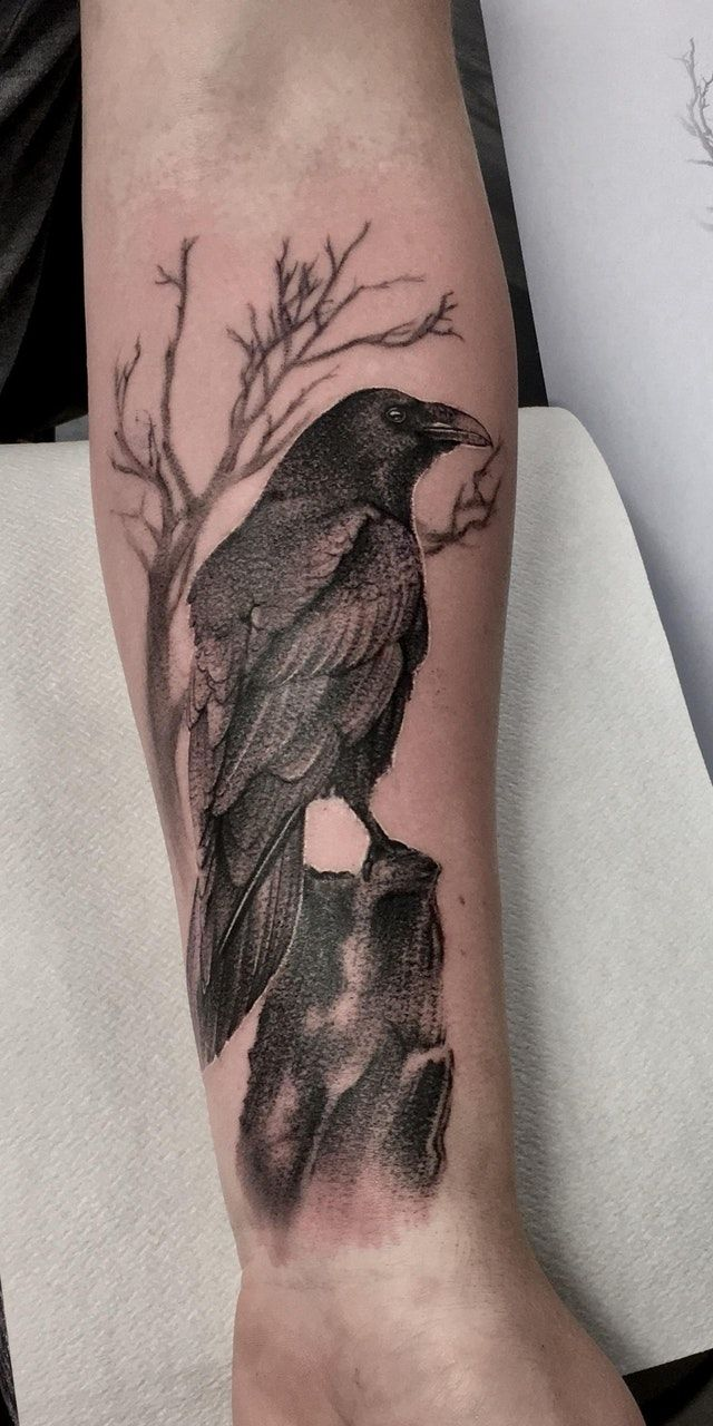 Reddit - tattoos - My first tattoo done by Richard Feodorow at Ivory Tower Tattoo in Gothenburg, Sweden