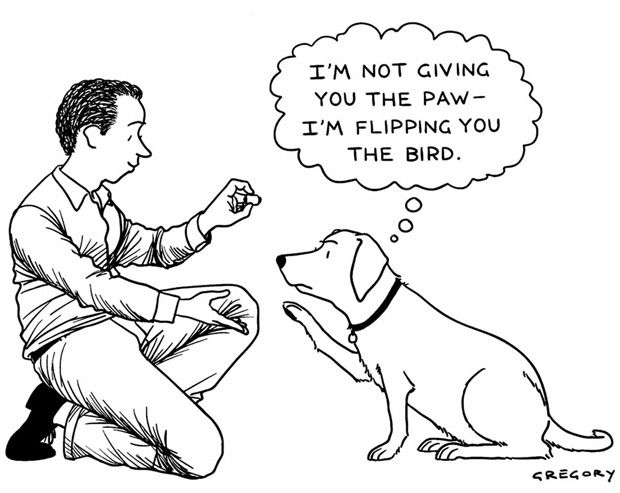 The Big New Yorker Book of Dogs | Brain Pickings: